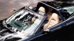 1999 Corvette Ozarks sm