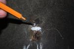 12-15-12 tranny insulation clip 4 sm