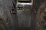 12-15-12 tranny insulation clip 7 sm